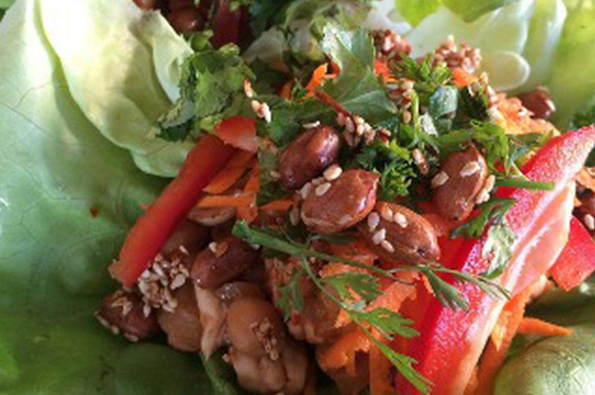 Thai Lettuce Chicken Cups Recipe